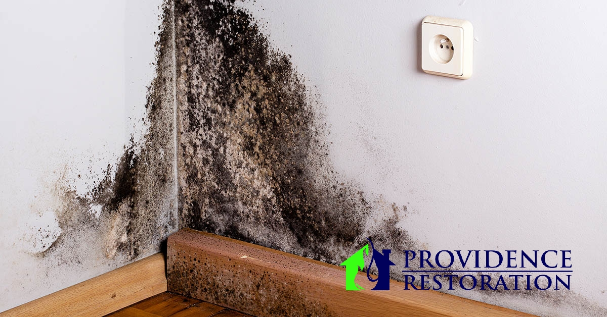 Mold Remediation in Fairview, NC