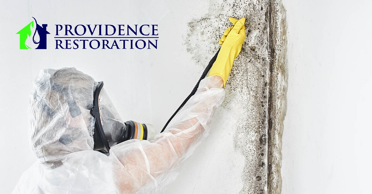 Mold Remediation in Hemby Bridge, NC