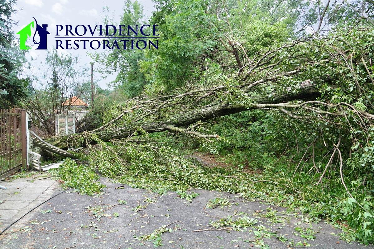Wind Damage Restoration in Monroe, NC