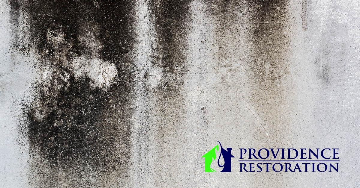 Mold Removal in Weddington, NC