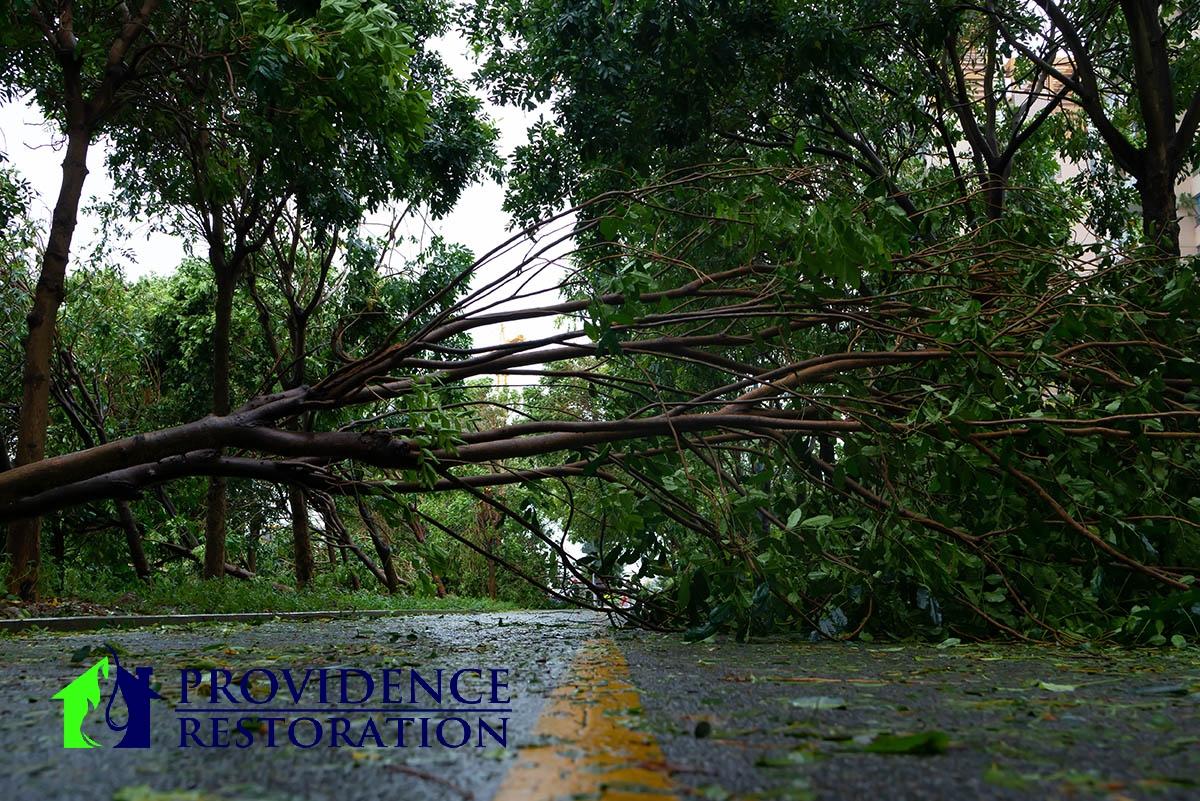 Wind Damage Restoration in Mint Hill, NC