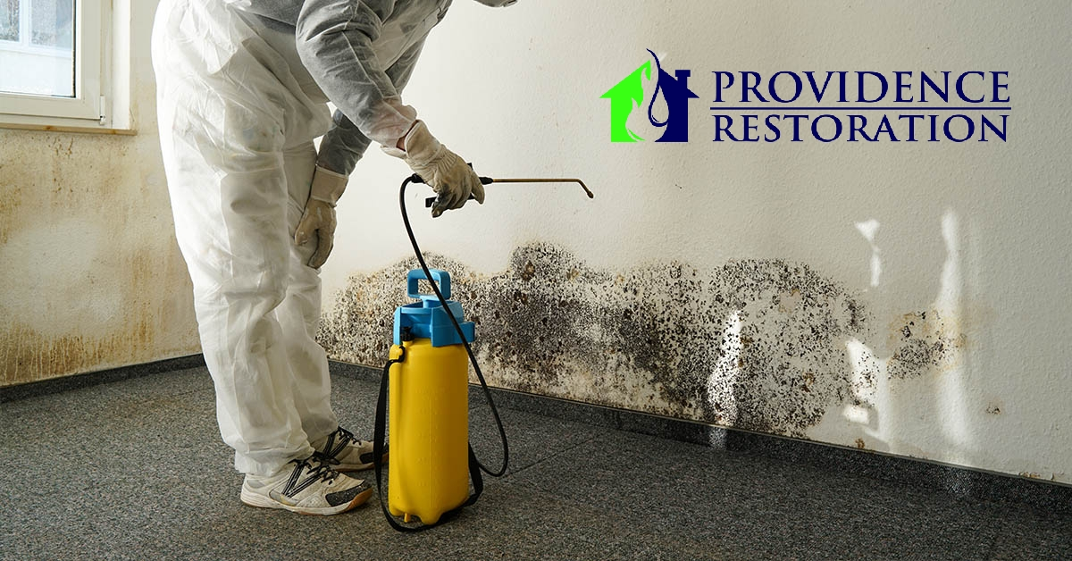 Mold Abatement in Stallings, NC