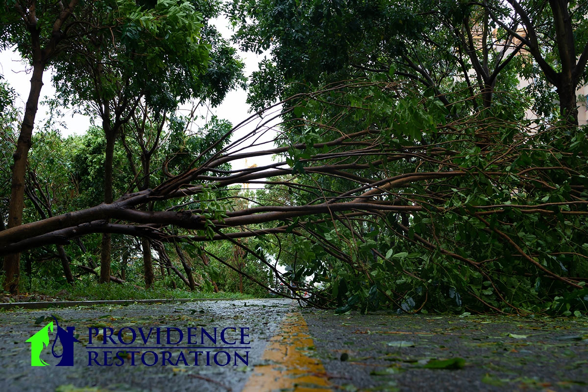 Storm Damage Restoration in Lake Park, NC