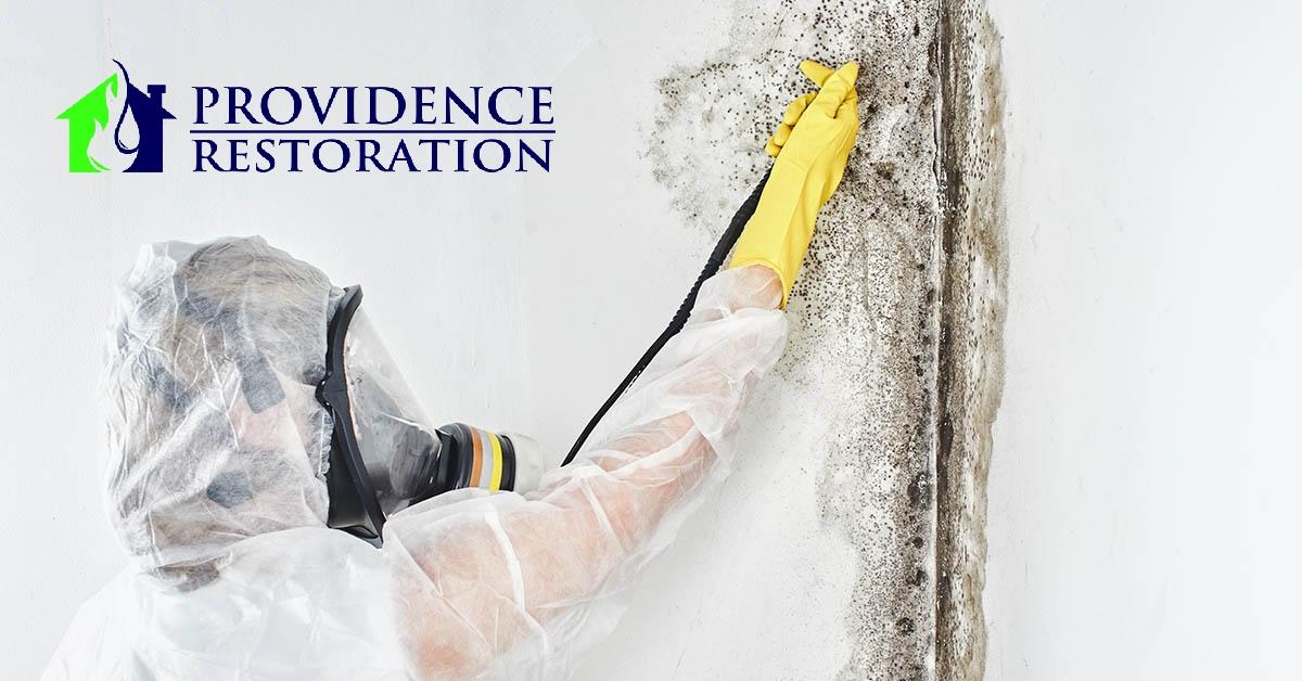 Mold Remediation in Marshville, NC