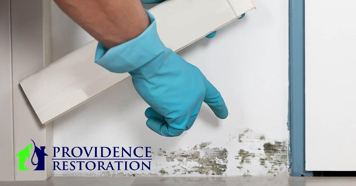 Mold Abatement in Monroe, NC