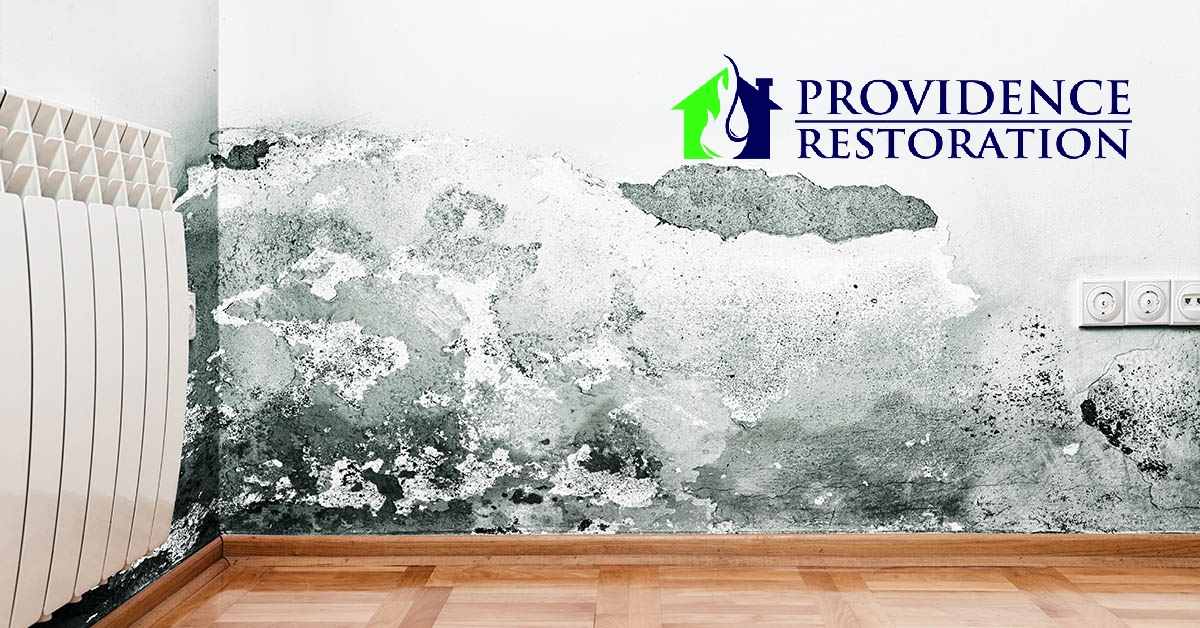 Mold Removal in Waxhaw, NC