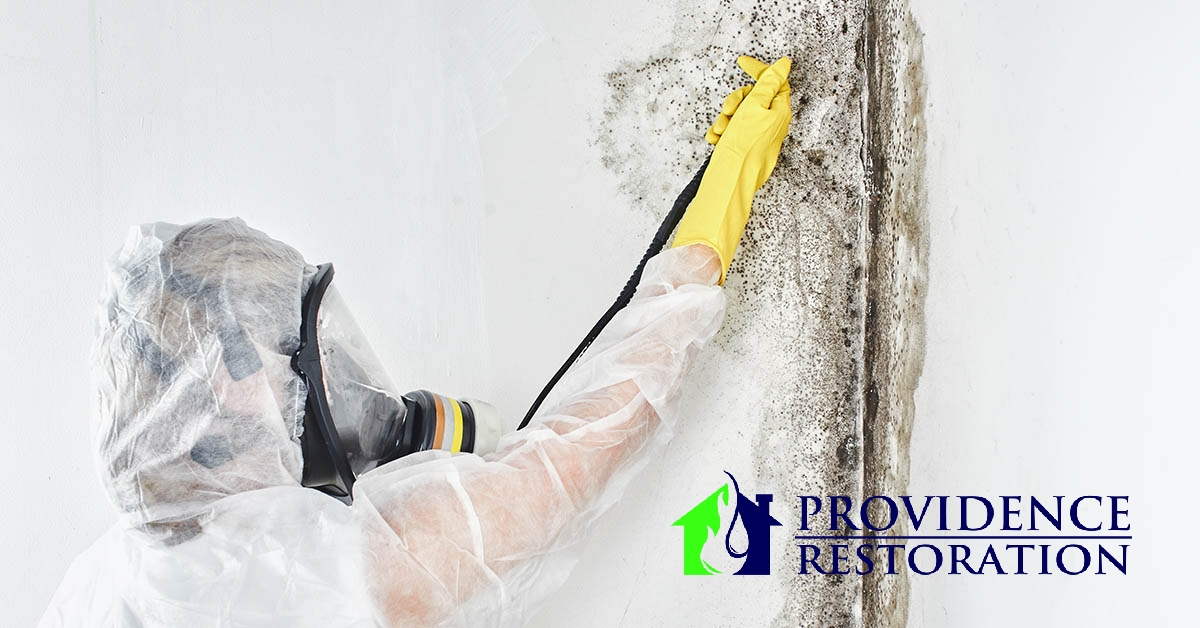 Mold Remediation in Lake Park, NC