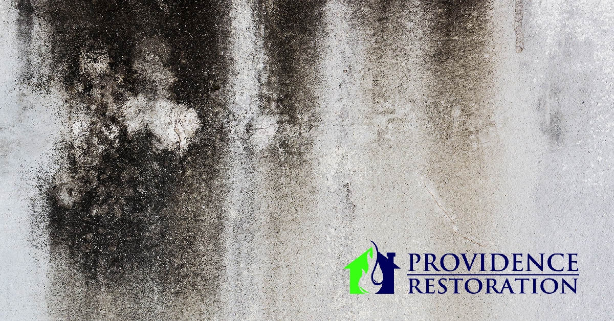 Mold Removal in Concord, NC