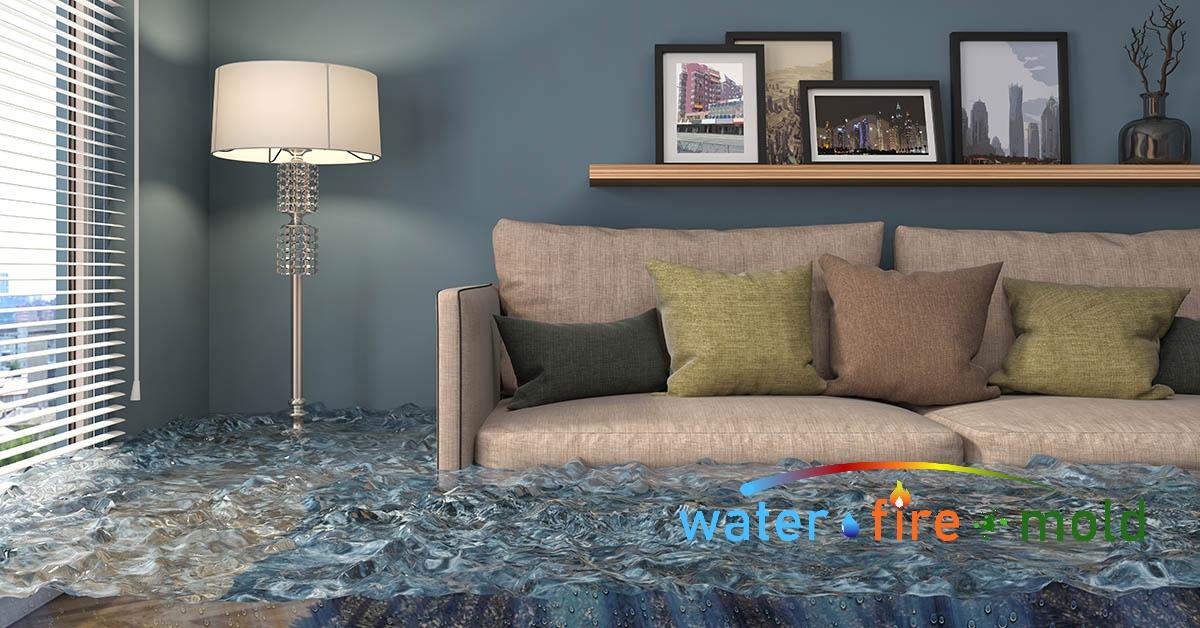 Water Damage Cleanup in Wartburg, TN