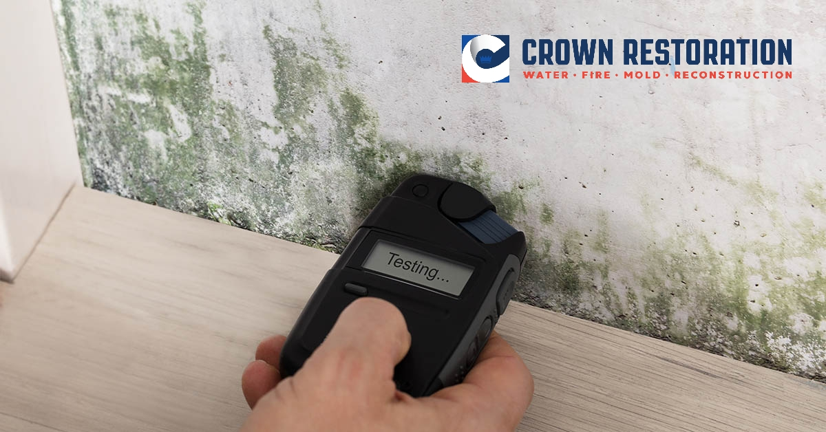 Mold Inspections in Cross Mountain Texas