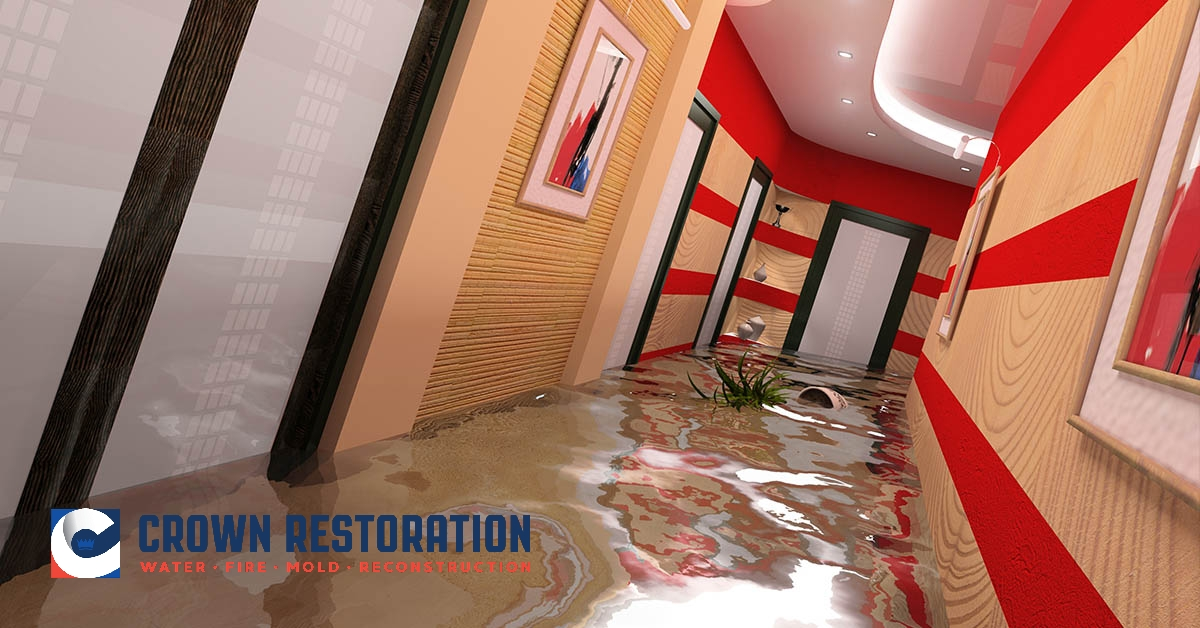 Water Damage Remediation in Helotes Texas