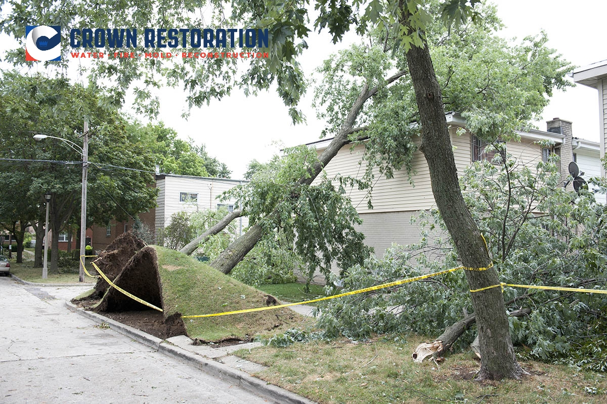 Wind Damage Cleanup in Sayers Texas
