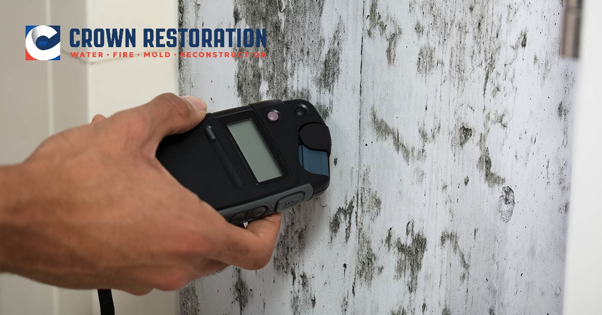 Mold Damage Restoration in Timberwood Park Texas