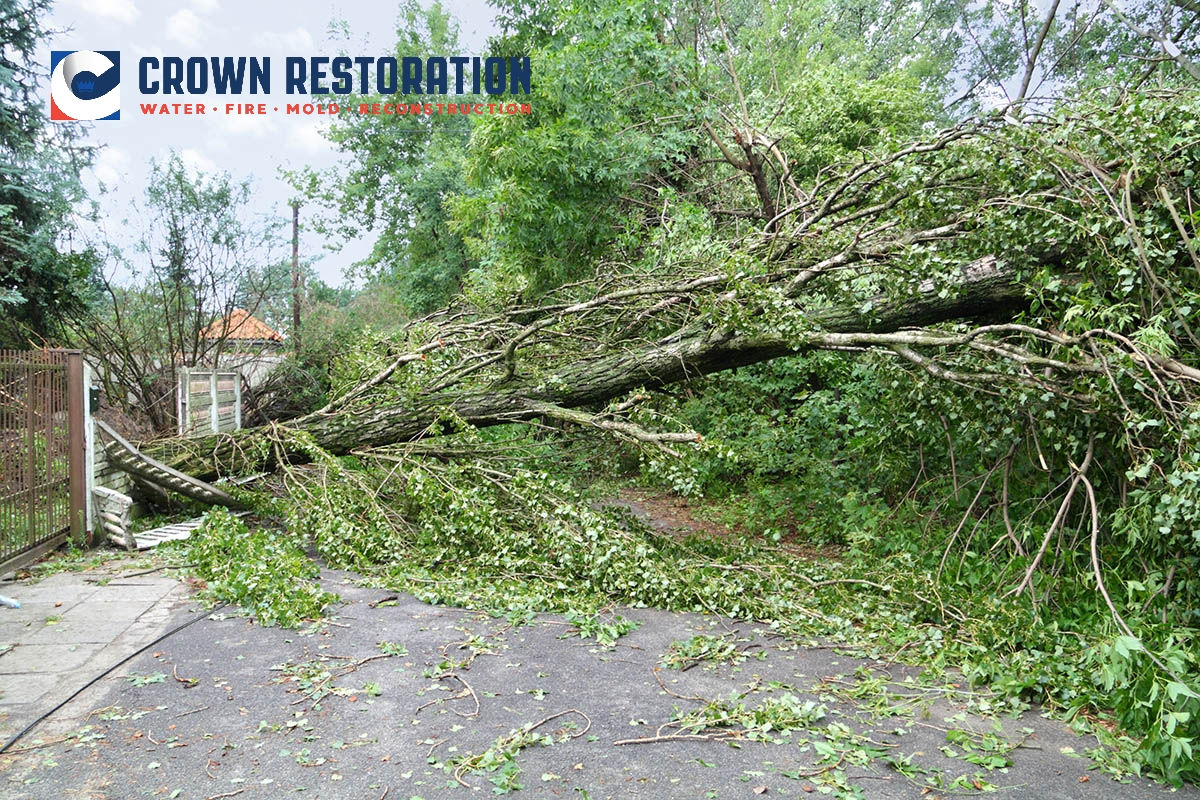 Hurricane Damage Cleanup in St. Hedwig Texas