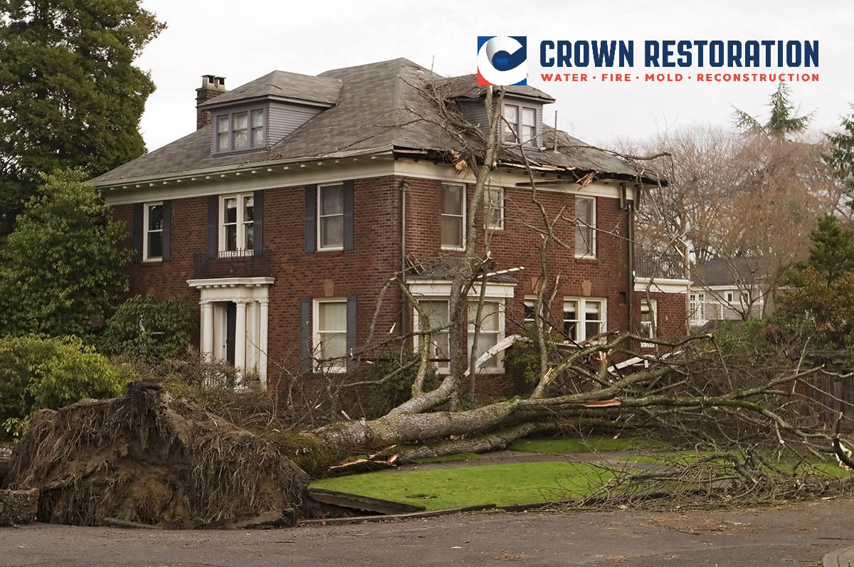 Wind Damage Cleanup in Helotes Texas