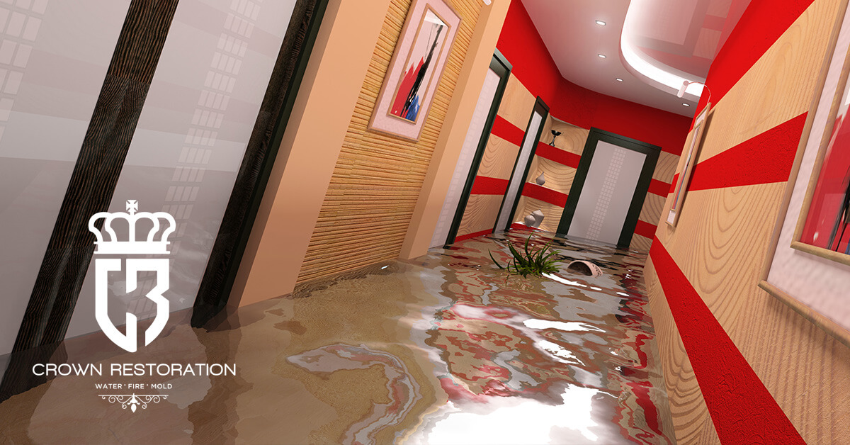 Commercial Water Damage Restoration in Olmos Park Texas