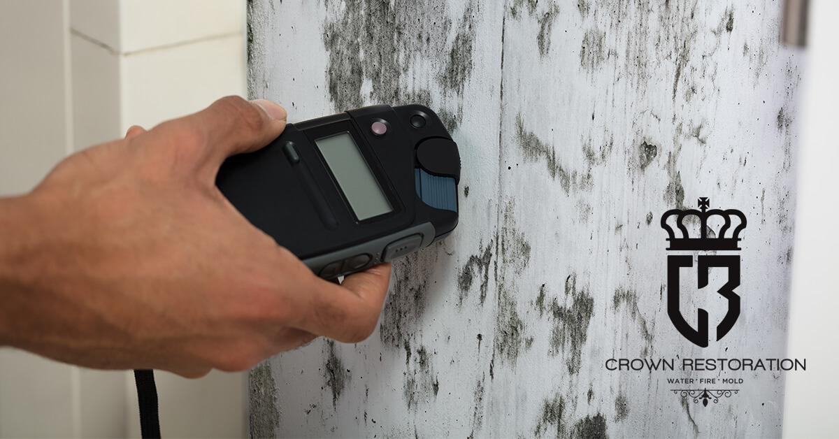 Mold Testing in Leon Valley Texas