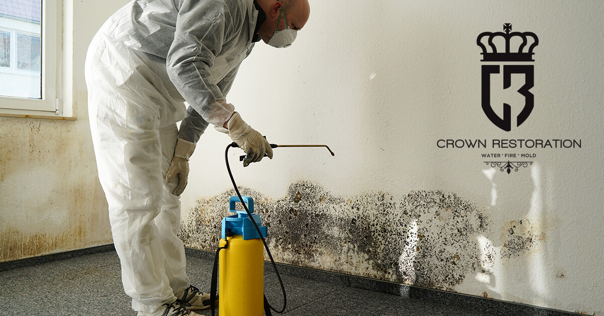 Mold Damage Restoration in Kirby Texas