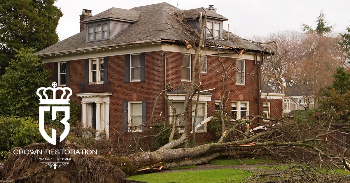 Hurricane Damage Cleanup in Helotes Texas