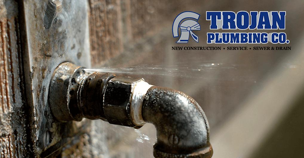 Frozen Water Pipe Leak Repair and Cleanup in Berwyn IL