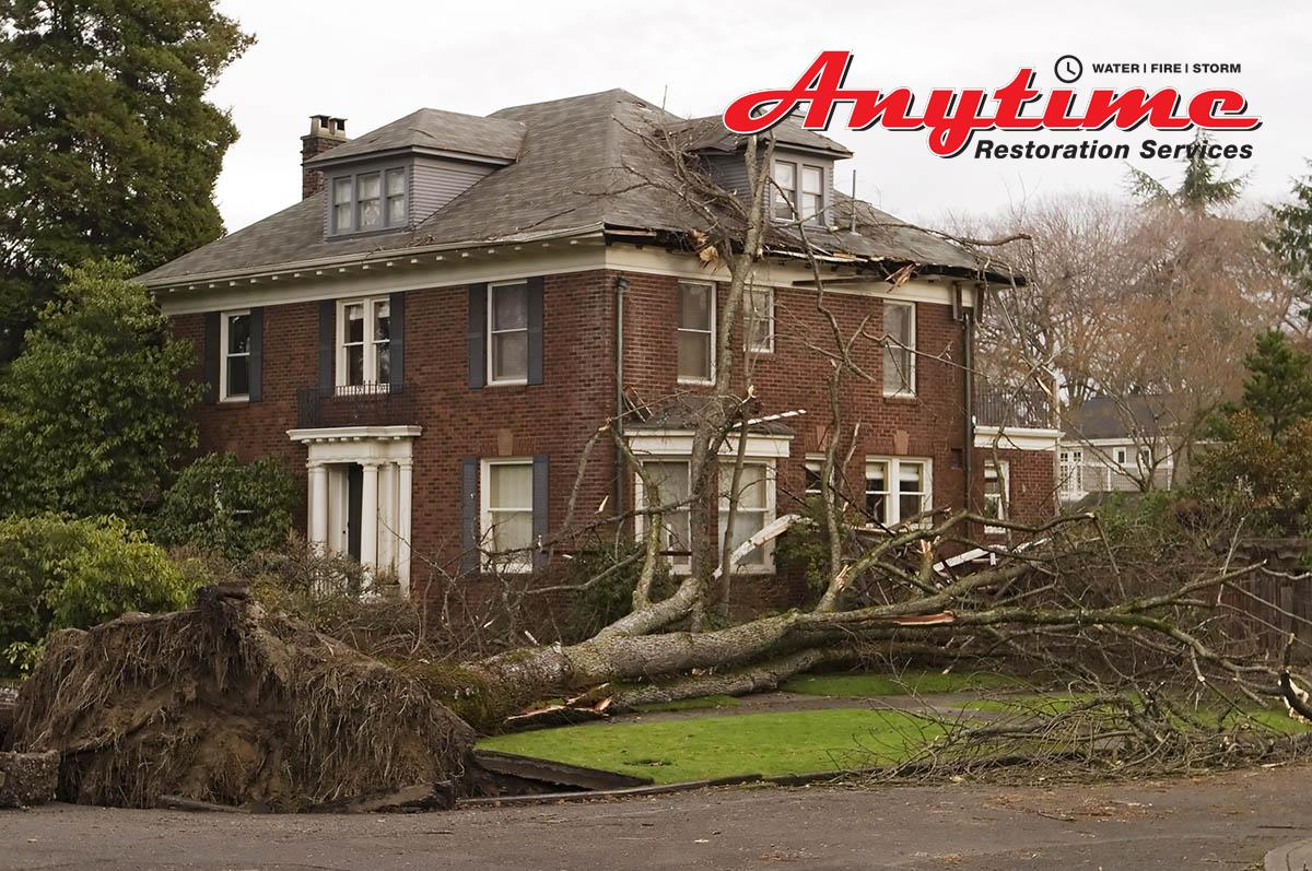 Full-Service Wind Damage Remediation in Grosse Pointe, MI