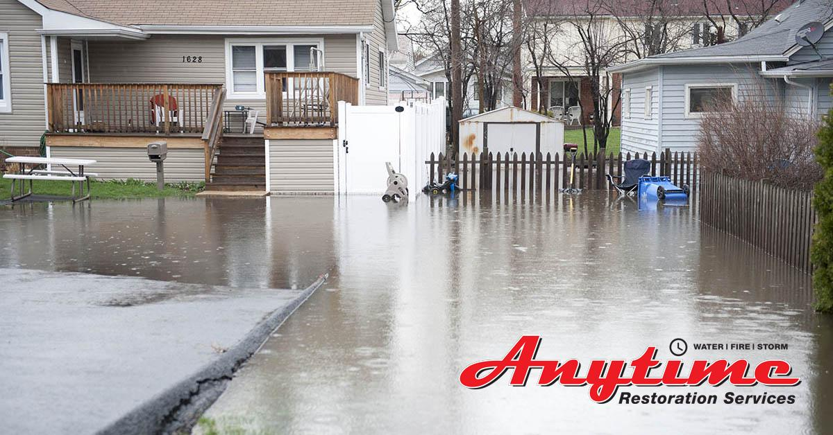 Certified Water Damage Remediation in New Baltimore, MI