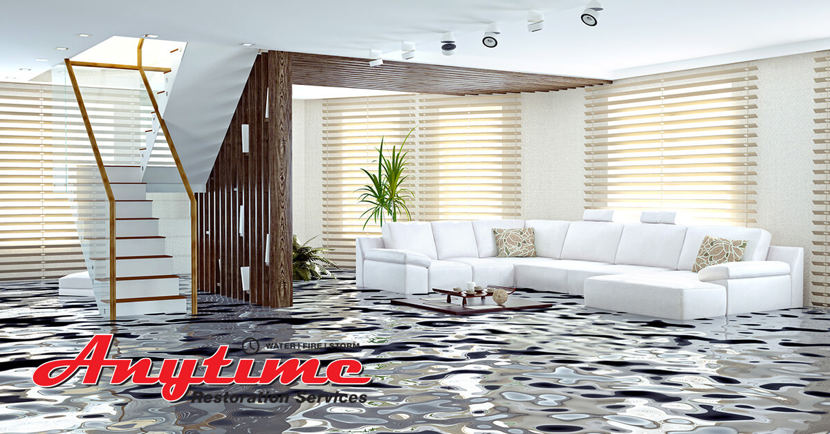 Professional Water Damage Cleanup in Ecorse, MI