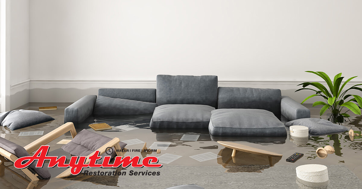 Professional Water Damage Mitigation in Marine City, MI