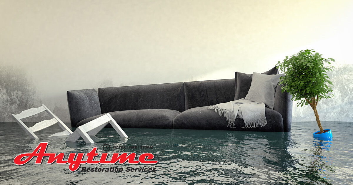 Professional Flood Damage Repair in St. Clair, MI