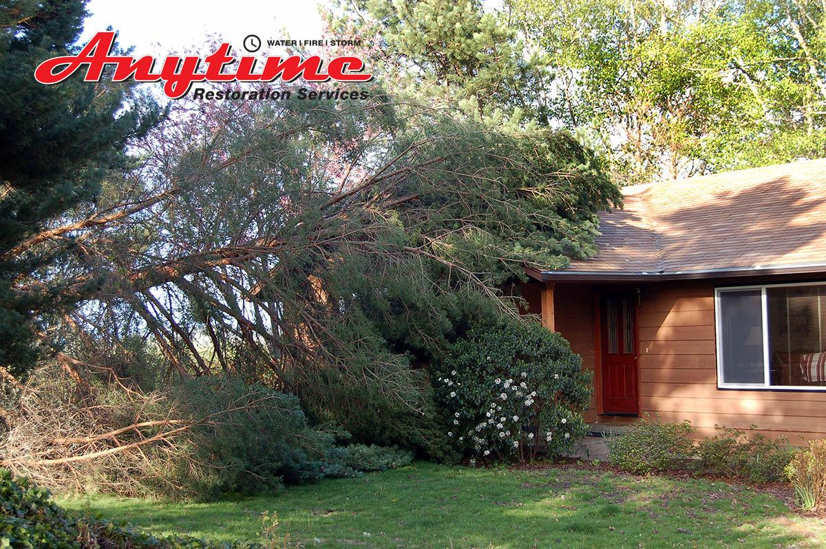 Certified Wind Damage Restoration in Romulus, MI