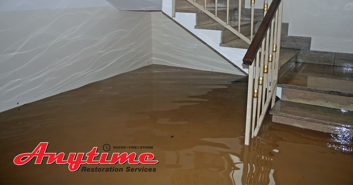 Water Damage Repair in Center Line, MI