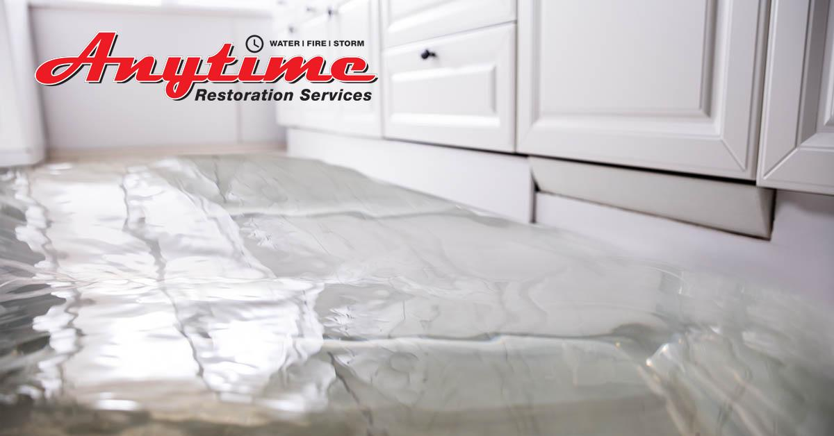 Full-Service Water Damage Removal in Eastpointe, MI