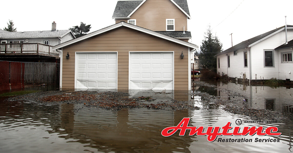 Professional Flood Damage Cleanup in Emmett, MI
