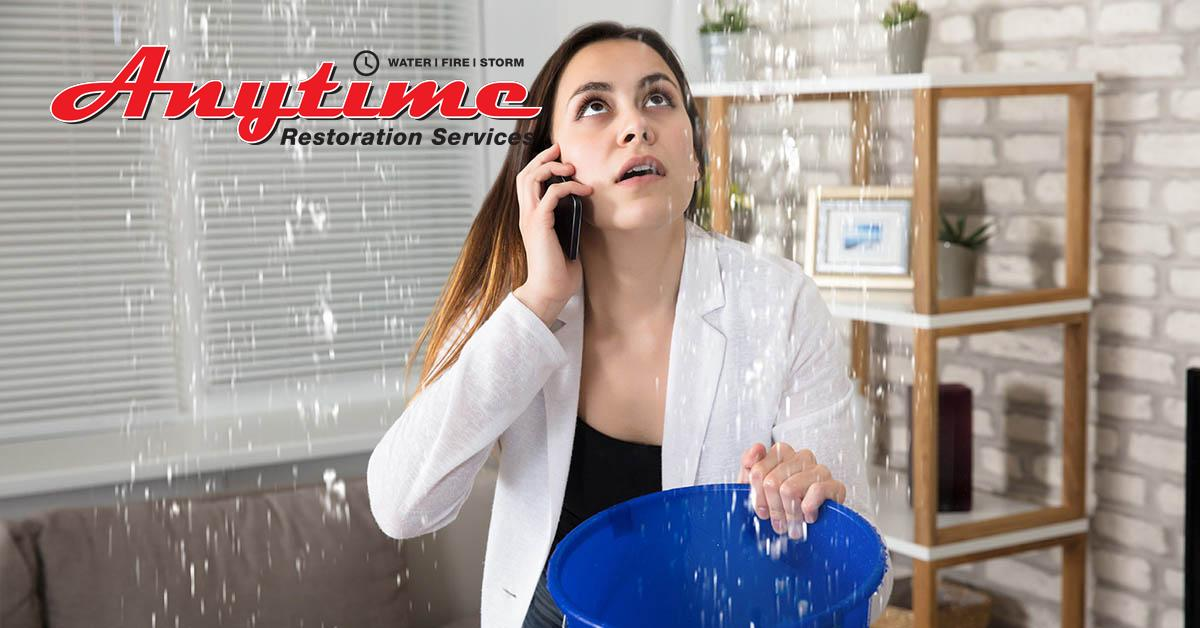 Full-Service Water Damage Restoration in Warren, MI