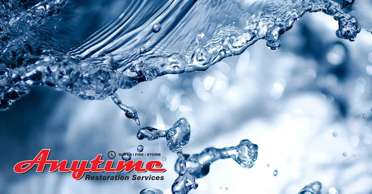 Full-Service Emergency Disaster Restoration Services in Traverse City, MI