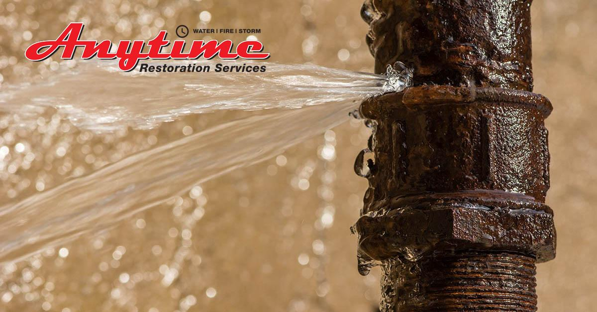 Full-Service Water Damage Repair in Marine City, MI