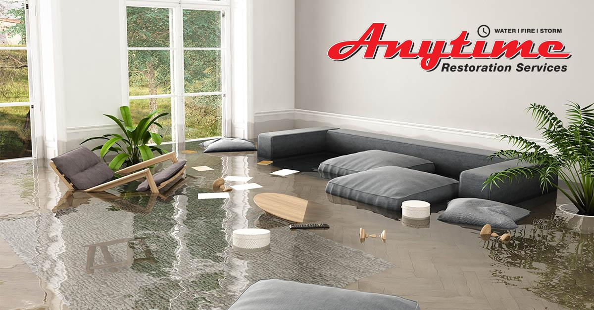 Full-Service Water Damage Remediation in Livonia, MI