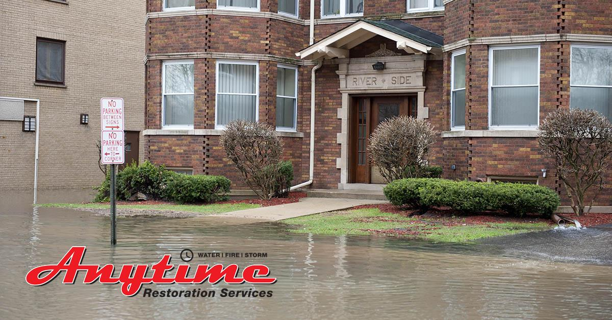 Certified Water Damage Mitigation in Detroit, MI