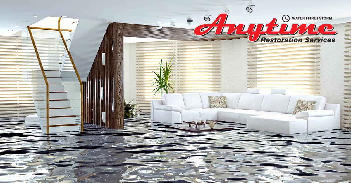 Certified Water Damage Removal in Algonac, MI