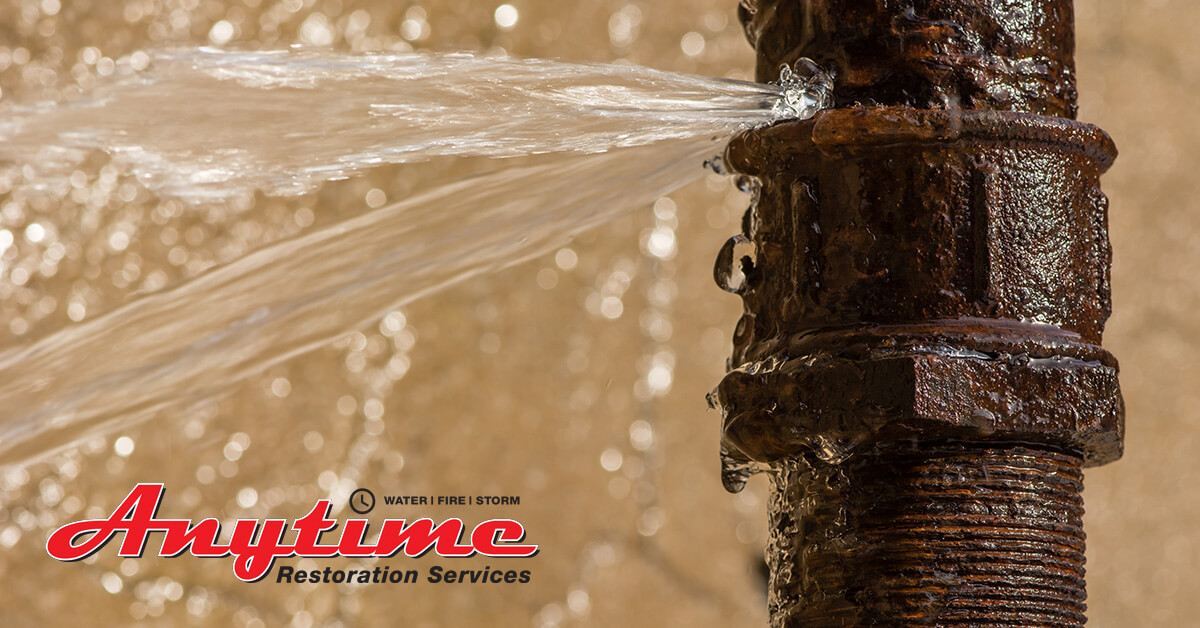 Professional Water Extraction in Detroit, MI
