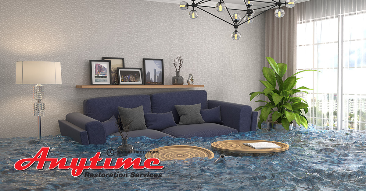 Professional Flood Damage Cleanup in Ecorse, MI