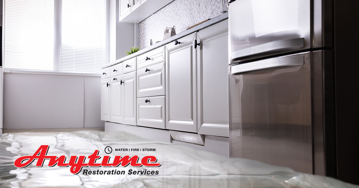 Professional Water Damage Cleanup in Capac, MI