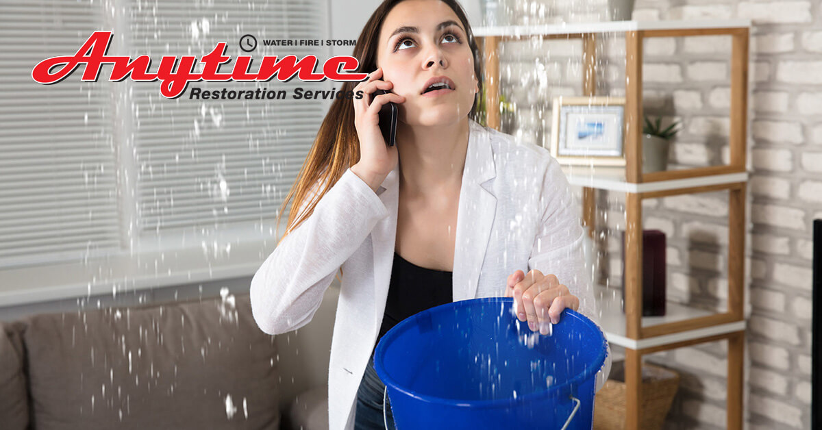 Professional Water Damage Cleanup in Flat Rock, MI
