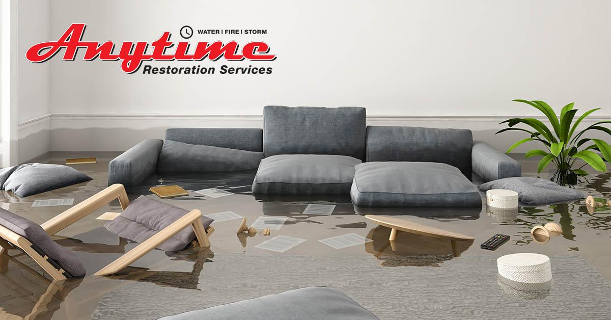 Certified Water Damage Removal in Sterling Heights, MI
