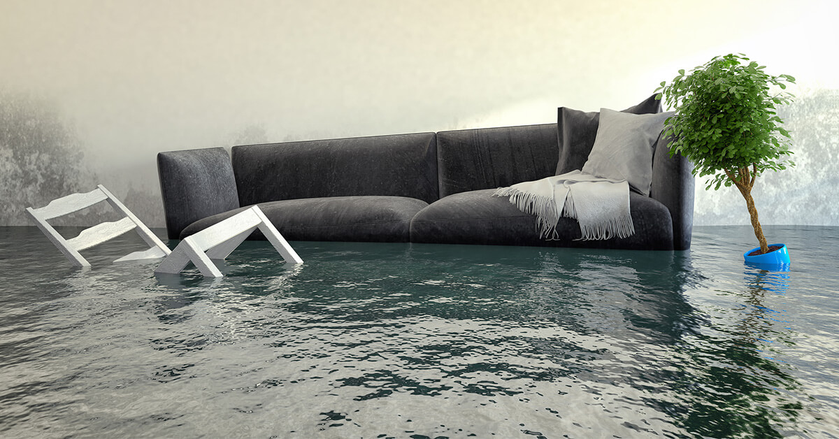 Professional Water Damage Remediation in Owings Mills, MD