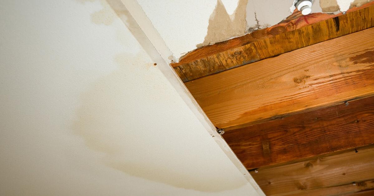 Professional Flood Damage Repair in Dundalk, MD