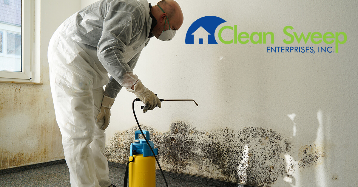 Mold Removal in Emmitsburg, MD