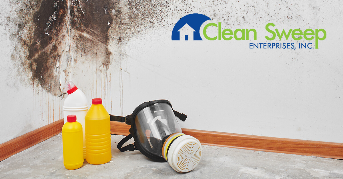 Mold Removal in Gamber, MD
