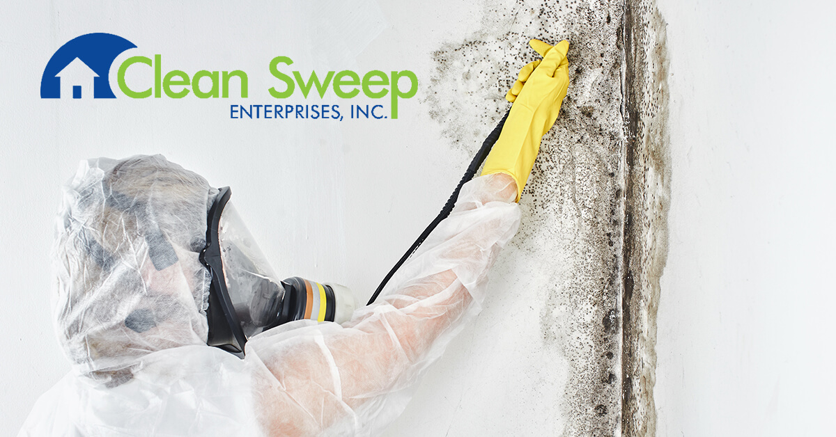 Mold Abatement in New Market, MD