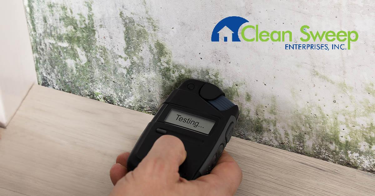 Certified Mold Removal in Columbia, MD